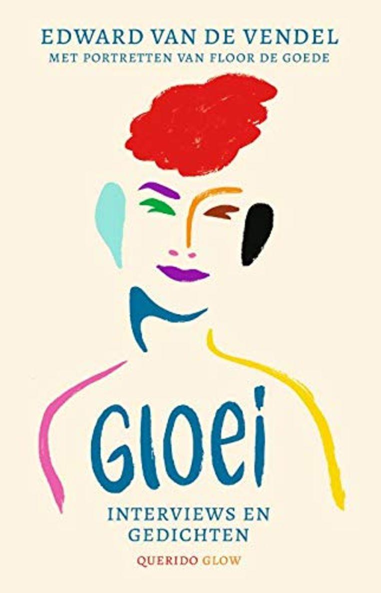 Edward van de Vendel & Floor de Goede, 'Gloei. Interviews en gedichten', Querido, 494 p., 22,50 euro, 12+. Beeld rv
