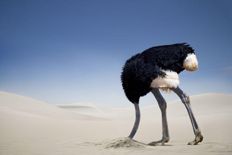 Op Blue Monday komen veel Nederlanders in aanmerking voor de struisvogeltrofee Beeld Getty Images