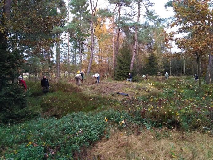 Eerdere schoonmaakactie op de grafheuvels aan de Apeldoornse Heuvellaan.