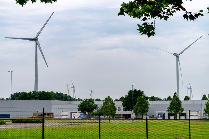 De Bossche windmolens gezien vanuit de Maaspoort.