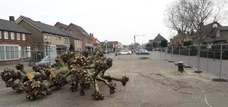 Laatste bomen weg van 't Dorp: 'Het scheelt een hele kijk'