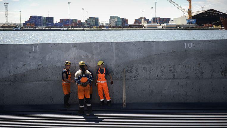 Arbeiders in de haven van Antwerpen. Beeld BELGA