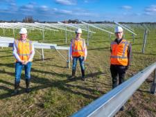 Bouw groot zonnepark in Klarenbeek begonnen: 'We accepteren het onder protest'