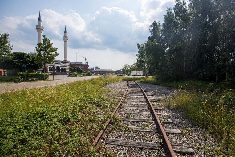 Het kolenspoor door Beringen.