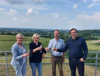 Heuvellandse wijnbouwers zetten in op duurzame wijnbouw en lokaal lekkers