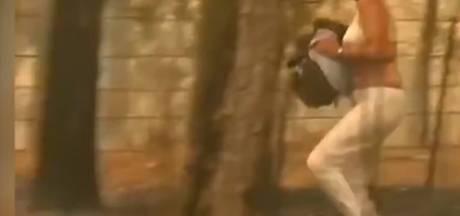 Une Australienne met tout en œuvre pour sauver un koala des flammes