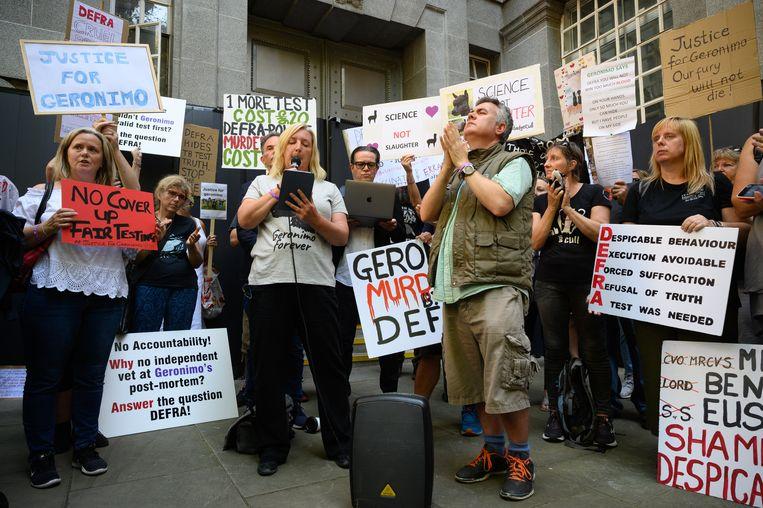 Helen MacDonald op een protest met de 'alpaca angels'. Beeld Getty Images