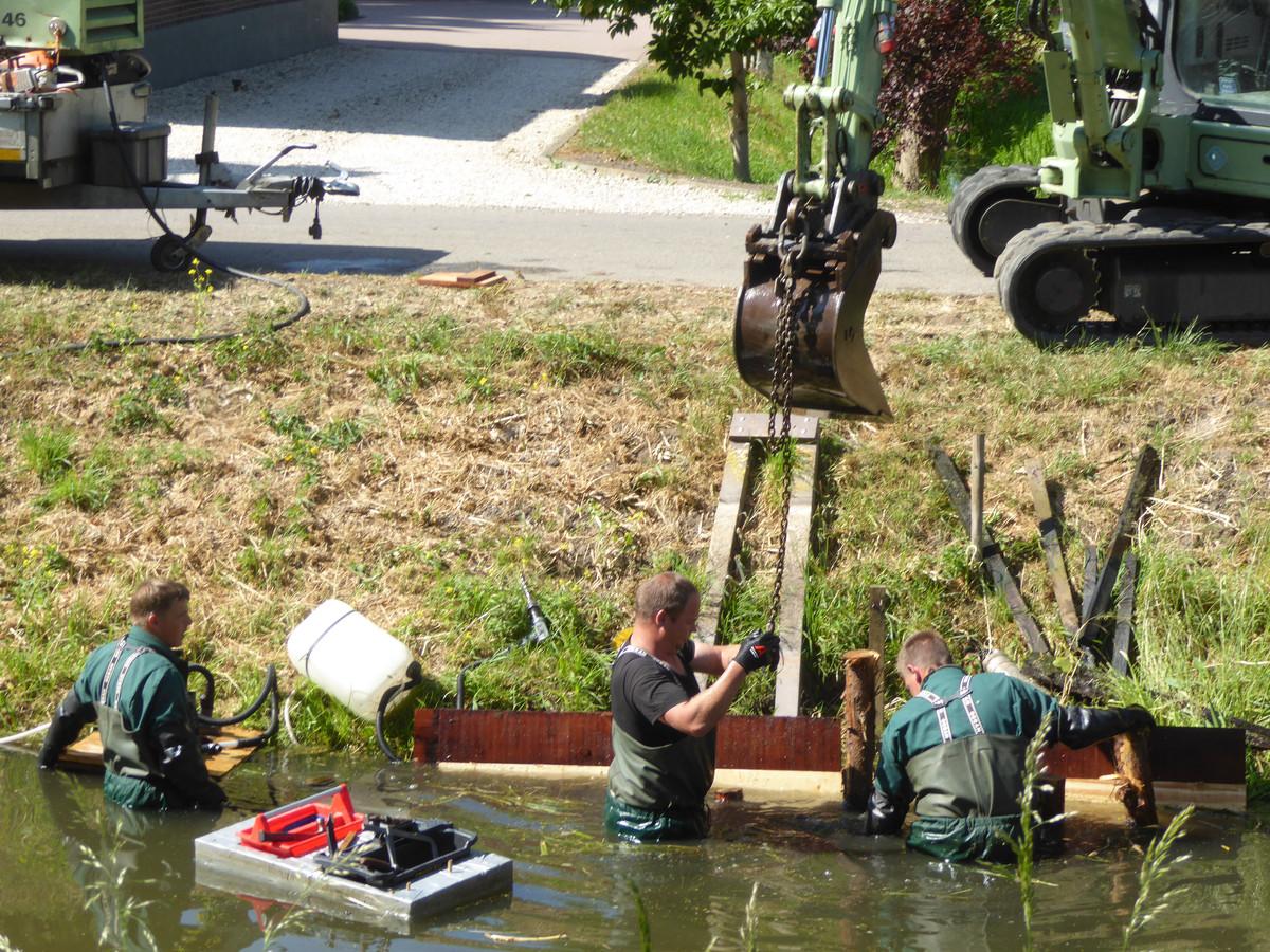Werknemers van aannemer De Heer zijn in het water van de Benschopperwetering bezig vele kilometers beschoeiing te vervangen.
