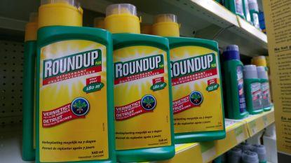 Na verzet tegen Roundup: ook ongunstige studies zijn voortaan in te kijken, zegt Europees Parlement