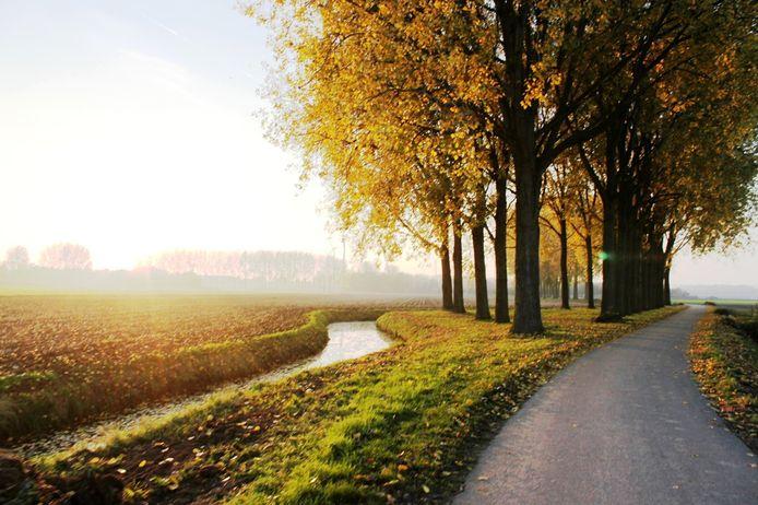De Oranjepolder bij Oosterhout.