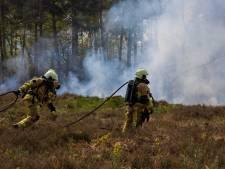 Droogte houdt aan: extra alert in natuurgebieden