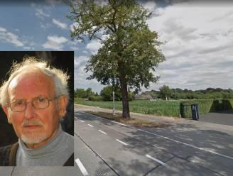 Kunstenaar Georges Staes krijgt straatnaam in nieuwe verkaveling
