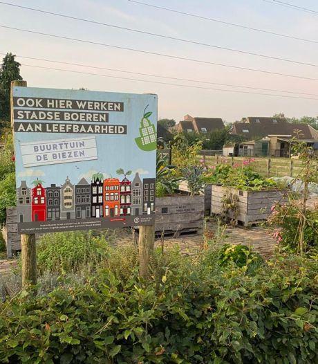 Groentes verdwenen uit buurttuin in Oss: 'Steeds meer mensen begonnen spullen te missen'