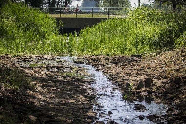 De waterstand in de Hagmolenbeek bij het Twentse Beckum is lager dan normaal. Beeld ANP