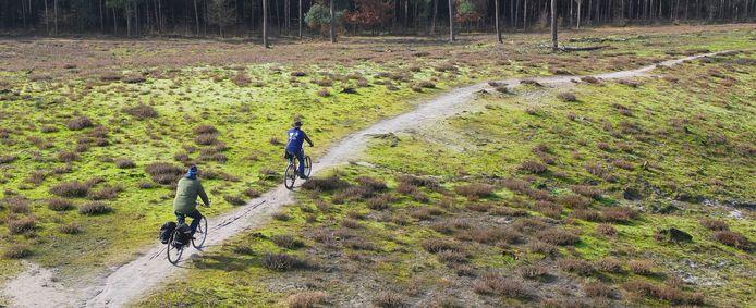 Mooi fietsgebied: Nationaal Park de Maasduinen, in Limburg. Pak de trein naar Boxmeer, dan het pontje bij Aerden. Je bent er.