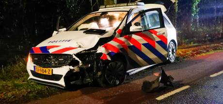 Man in gestolen auto overlijdt door botsing tegen boom in Riethoven, politie kan voertuig niet ontwijken