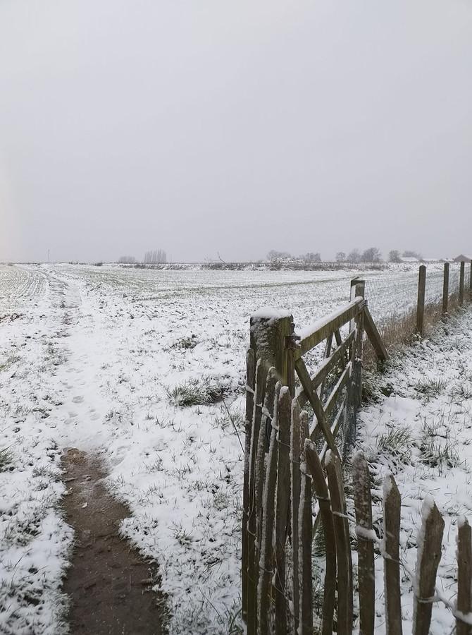 De sneeuw zorgde voor prachtige winterse taferelen.