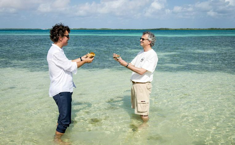 Op Bonaire, als KLM-president-directeur op milieumissie, 2014. Beeld anp