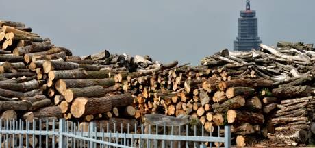 Extra houtopslag is welkom langs Rijn, maar niet bij iedereen