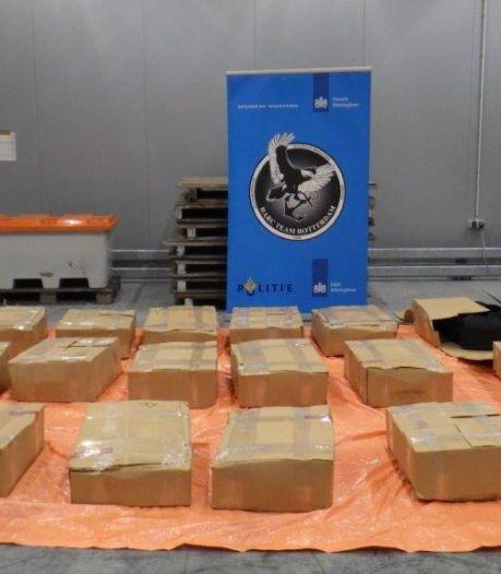 Douane onderschept 1159 kilo cocaïne (met straatwaarde van 87 miljoen euro) in Rotterdam