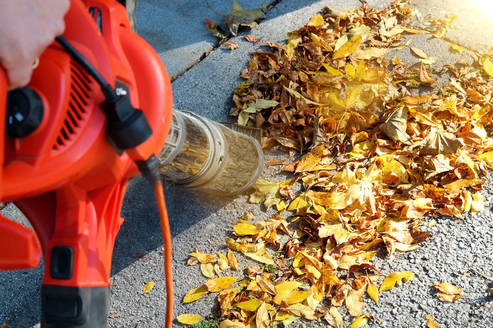 Veel mensen gaan deze weken met de bladblazer aan de gang om de tuin, of in ieder geval de paden vrij te houden.