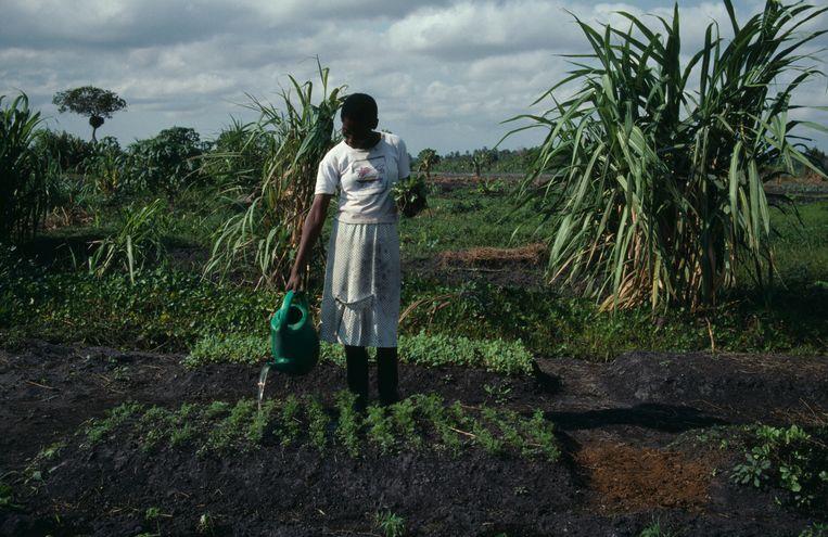 Ontwikkeling heeft veel tijd nodig. Zeker in de armste landen blijven de burgers op lange termijn wél in hun land. Beeld © © Eye Ubiquitous