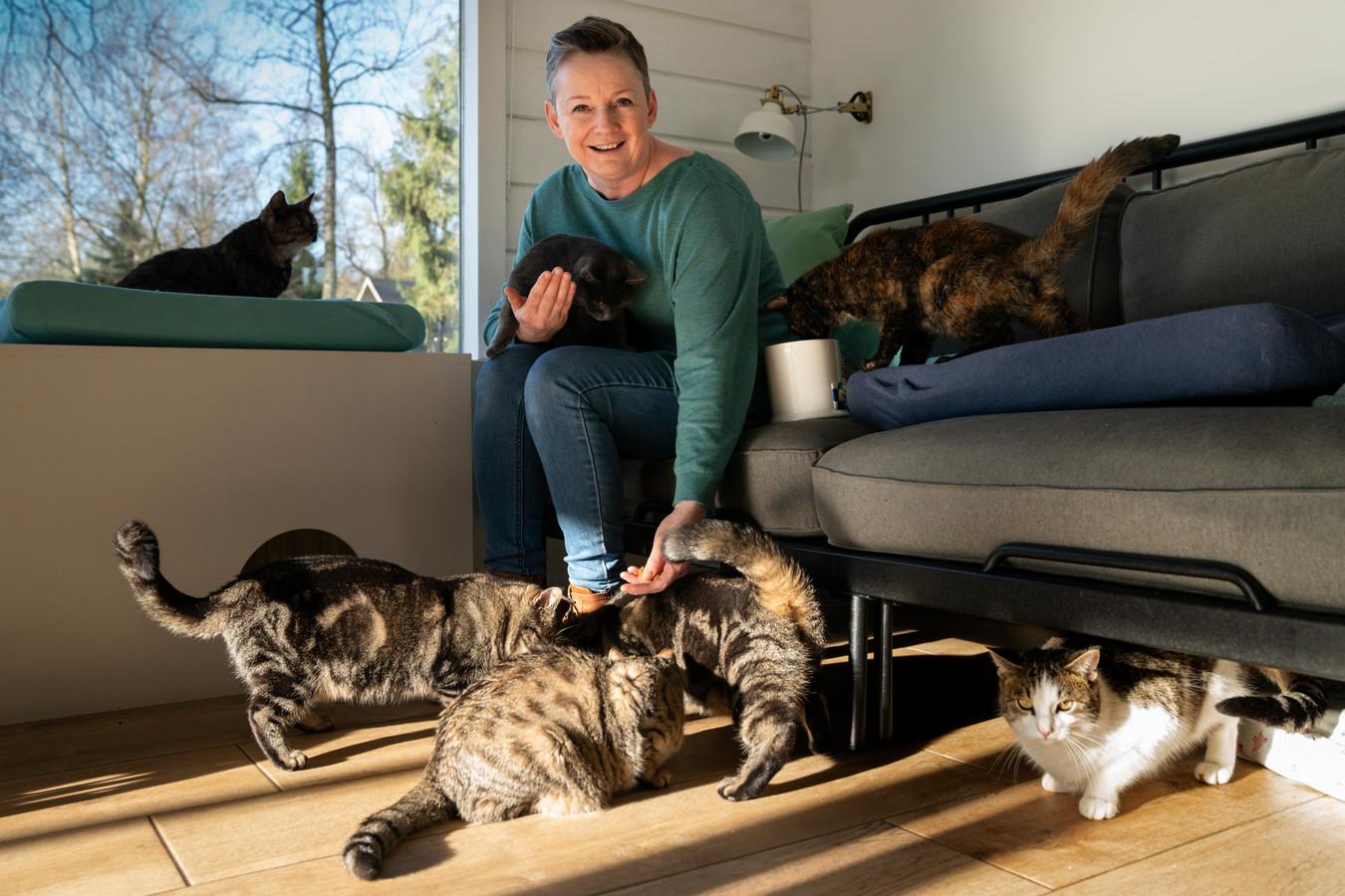Dertien katten heeft Arianne de Jong inmiddels en allemaal mankeren ze iets.