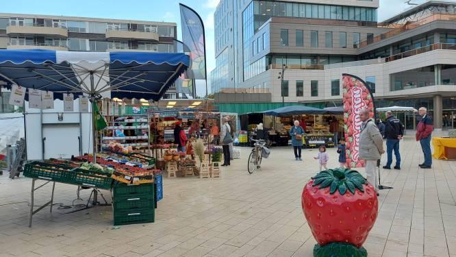 Markt Maarssenbroek is terug op vertrouwde plek bij Bisonspoor