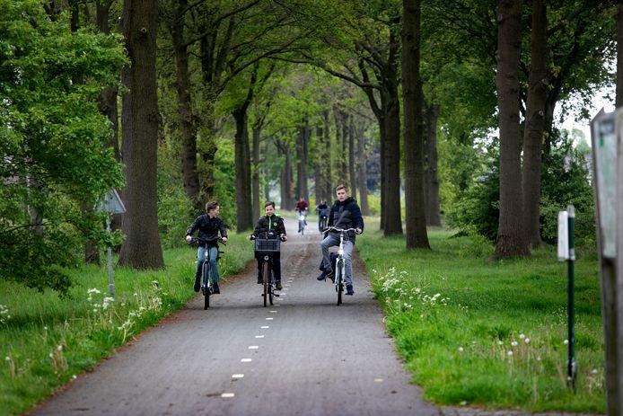terroruil valt fietsende scholieren lastig aan de Vessemseweg in Knegsel