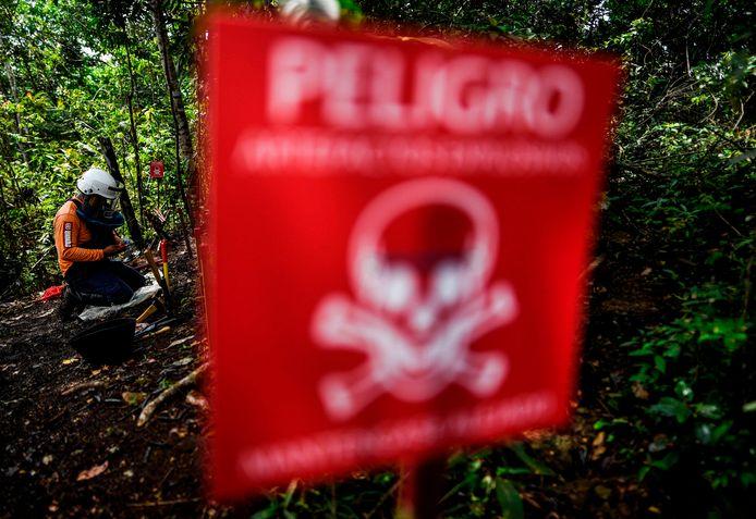 Oud-FARC-leden die wel de wapens afgelegd hebben nemen deel aan een ontmijningsprogramma in Colombia. Archiefbeeld.