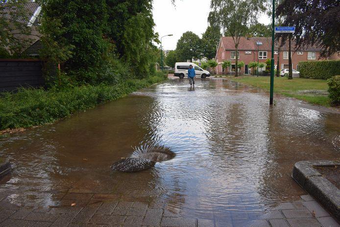 Waterballet aan het Jan Roeckplantsoen in Veenendaal.