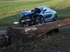 Auto vliegt uit de bocht en knalt tegen boom, Schaijkseweg in Zeeland voorlopig afgesloten