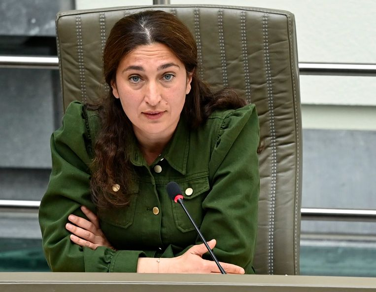 Vlaams minister van Natuur Zuhal Demir. Beeld Photo News