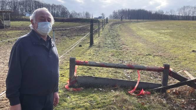 """Buurtbewoner Georges (72) en oppositie in clinch met Diestse meerderheid omwille van afgesloten trage weg: """"Mails met getuigenissen kwamen nooit in dossier"""""""
