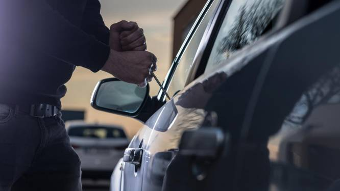 Twee inbraken in auto's in Berkenhof
