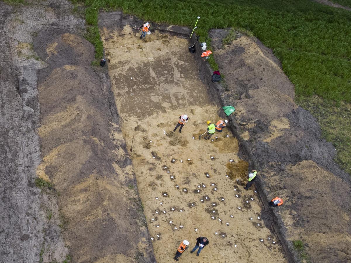 De medewerkers van ADC ArcheoProjecten bezig in een sleuf op het akkerland aan de Zuid Esweg bij Wierden.