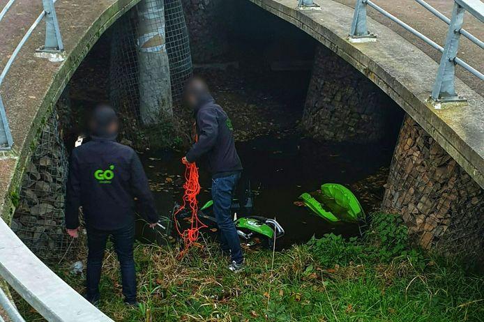 Medewerkers van Go Sharing halen een deelscooter uit het water.