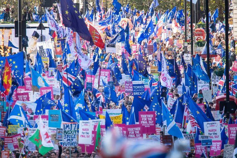 Een anti-brexitdemonstratie in Londen in 2019. Archiefbeeld. Beeld Photo News