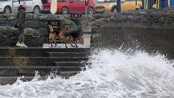 Tropische storm Ophelia eist al drie mensenlevens in Ierland
