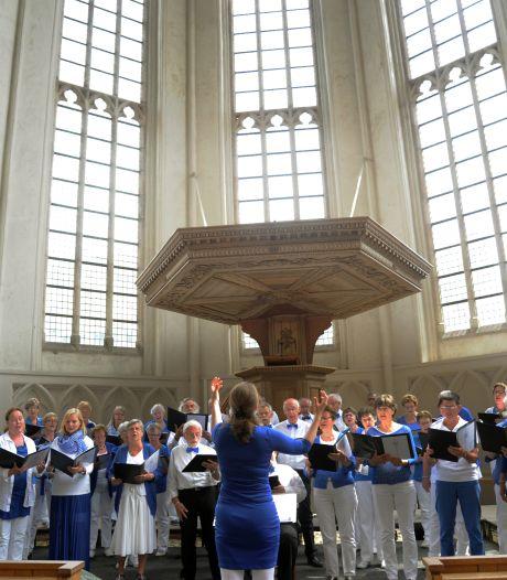 VÓlkorenfestival in Middelburg slaat digitale weg in: 'Nog een jaar overslaan wilden we echt niet''