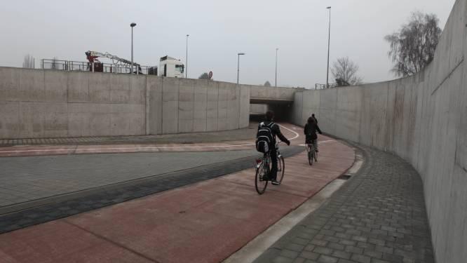 Graffitikunstenaars toveren fietstunnels Zuiderring om tot uniek kunstwerk