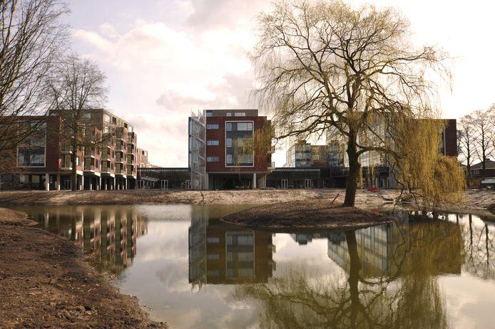 Bij enkele appartementengebouwen van het Zellebergenkwartier worden zondag balkonserenades gebracht.