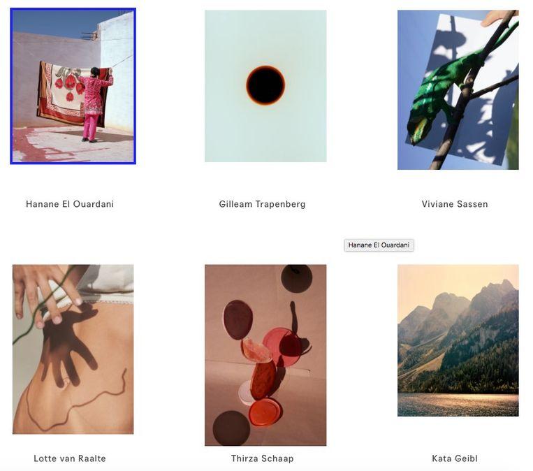 Enkele van de beschikbare foto's. Beeld Pictures for purpose