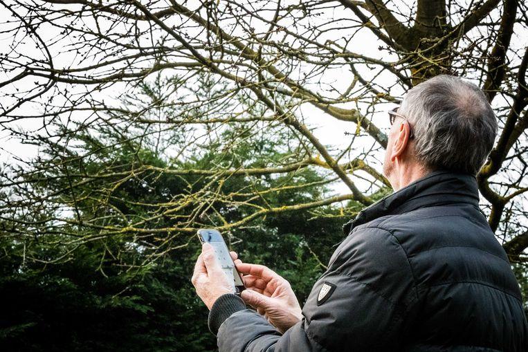 Een man telt vogels met de app van stichting Vogelbescherming Nederland. Beeld ANP
