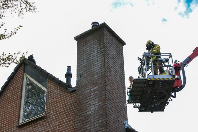 De brandweer is vanmorgen met hoogwerker en schepnet onderweg om de kat (links) van het dak te halen.