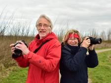 Zorgen om vogels als er windmolens komen nabij Bentwoud