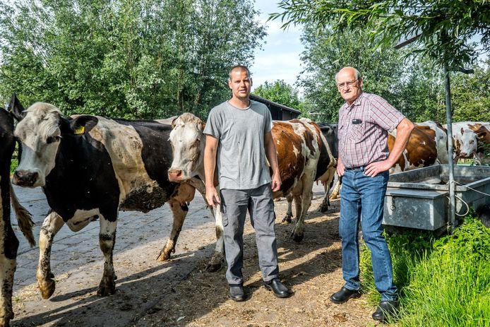 Hoeve Ackerdijk   Bas  en zijn vader Arie van den Berg op de biologische Hoeve Ackerdijk in Midden-Delfland.