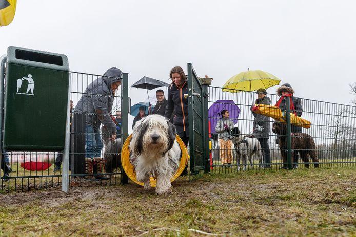 Foto uit 2019 waarop te zien is dat de Moerdijkse wethouder Jack van Dorst een nieuw hondenlosloopterrein aan de Westkreekweg in Fijnaart opent.