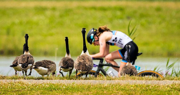 Maya Kingma in aktie tijdens het fietsen. Beeld Jiri Büller / de Volkskrant