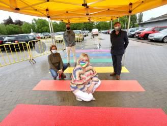 IN BEELD. Sint-Truiden legt permanent 'regenboogpad' aan op Internationale Dag Tegen Homofobie en Transfobie